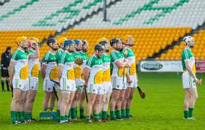 Offaly v Westmeath Leinster SHC