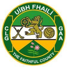 Job Advertisement – Head Of Operations – Offaly GAA