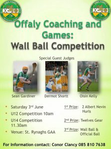 Offaly Coaching and Games Wall Ball competition
