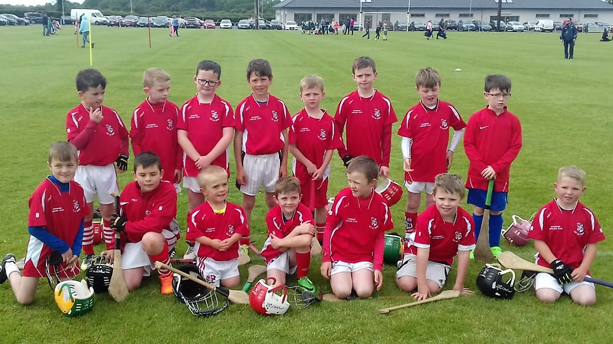 Brilliant U9 Hurling Blitz