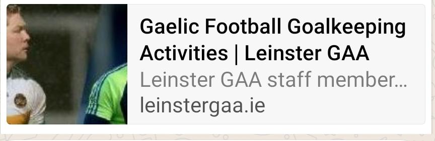 Gaelic Football Goalkeeping Activites
