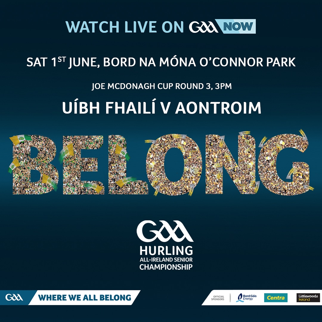 Offaly Senior Hurling Team to play Antrim announced