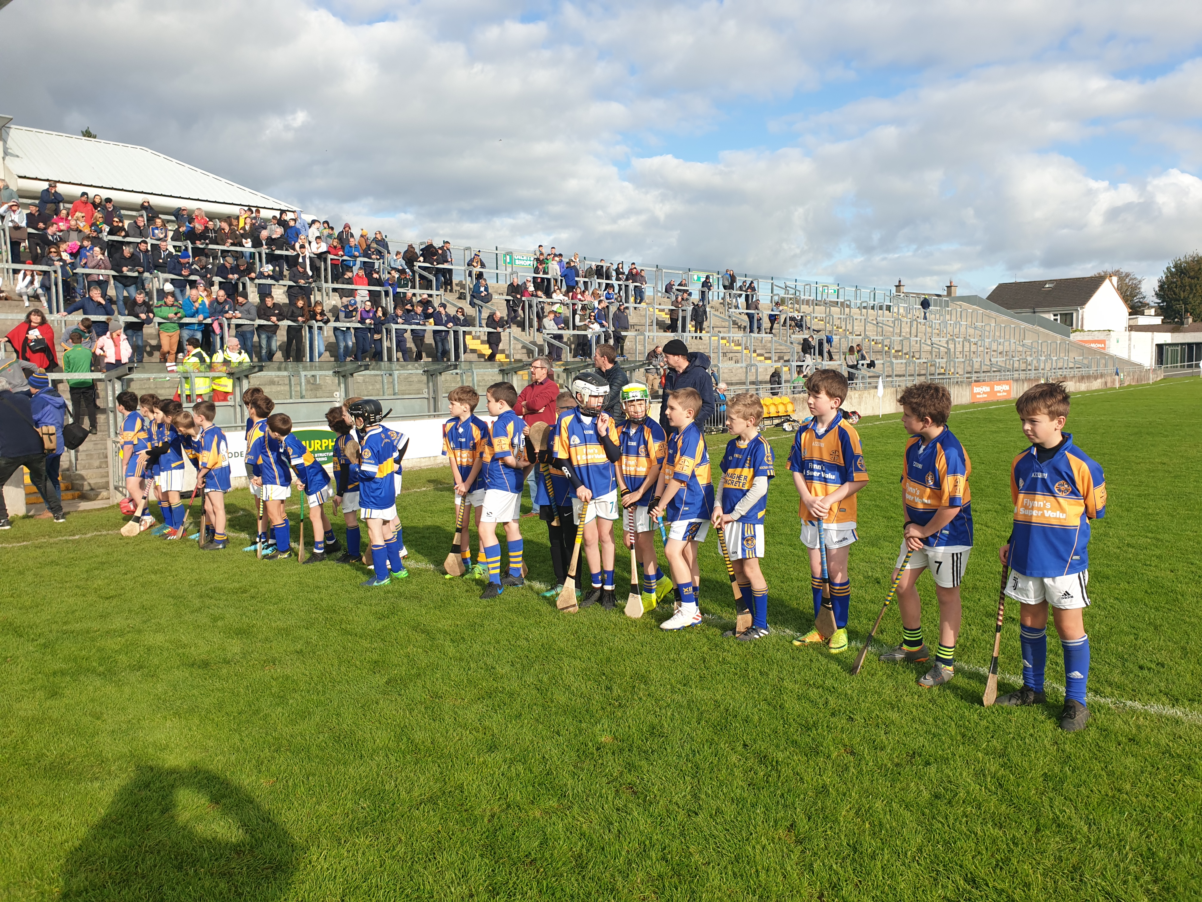 St Rynagh's crowned Senior Hurling Champions