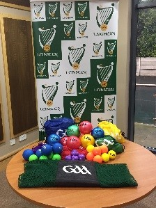 "Leinster GAA ""Have a Ball"" Programme (5/6 year olds)"