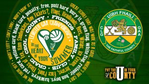 Offaly Minor Hurling Team Announced